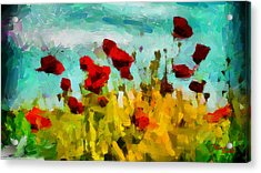 The Poppy Field Tnm Acrylic Print by Vincent DiNovici