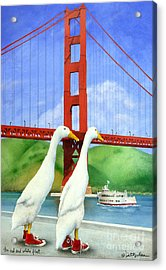 The Red And White Fleet... Acrylic Print by Will Bullas