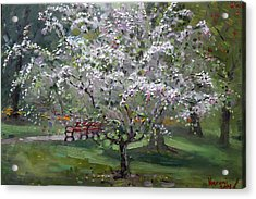 The Red Bench Acrylic Print by Ylli Haruni