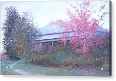 The Red Maple Tree Acrylic Print by Jan Matson