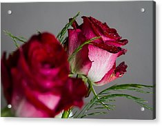 The Red Rose Acrylic Print by Andreas Levi
