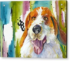 The Rescue Me Dog Acrylic Print by P Maure Bausch