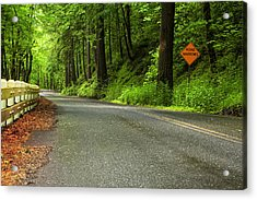 The Road Ahead Acrylic Print by Andrew Soundarajan