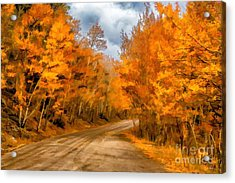 The Road Less Traveled Acrylic Print by Jon Burch Photography