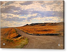 The Road Less Traveled Acrylic Print by Marty Koch