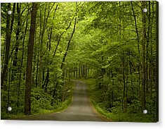 The Road Less Travelled Acrylic Print by Andrew Soundarajan