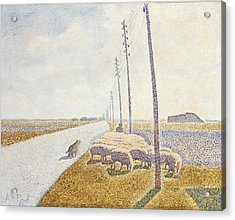 The Road To Nieuport Acrylic Print by Willy Finch