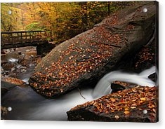 The Rock Acrylic Print by Dan Myers