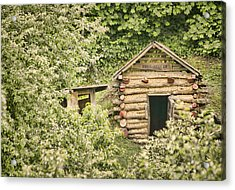 The Root Cellar Acrylic Print by Heather Applegate