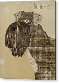 The Schnauzer Dog  Acrylic Print by Bri B