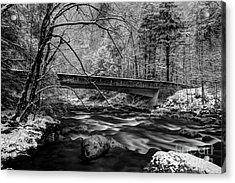 The Seasons Promise Acrylic Print by Michael Eingle