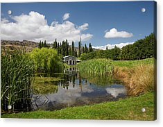 The Shed And Pond, Northburn Vineyard Acrylic Print by David Wall