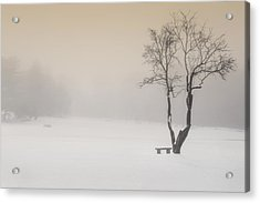 The Solitude Of Winter Acrylic Print by Bill Wakeley