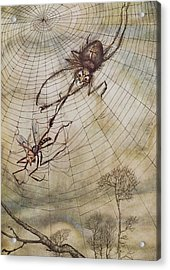 The Spider And The Fly Acrylic Print by Arthur Rackham