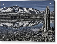 The Stump And The Mountain Acrylic Print by Mitch Shindelbower
