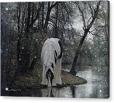 The Thirst Acrylic Print by Terry Kirkland Cook