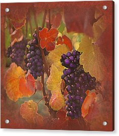 The Thought Of Drink Acrylic Print by Jeff Burgess