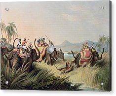 The Tiger At Bay Acrylic Print by Samuel Howett