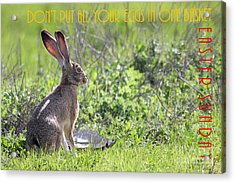 The Tortoise And The Hare Dont Put All Your Eggs In One Basket Easter Sunday 40d12379 Acrylic Print by Wingsdomain Art and Photography