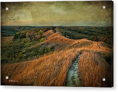 The Trailhead Acrylic Print by Jeff Swanson