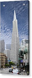 The Transamerica Pyramid - San Francisco Acrylic Print by Mike McGlothlen