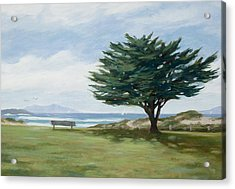 The Tree At Marina Park Acrylic Print by Tina Obrien