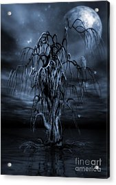 The Tree Of Sawols Cyanotype Acrylic Print by John Edwards
