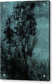 The Tree Acrylic Print by Sarah Vernon
