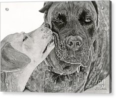 The Unconditional Love Of Dogs Acrylic Print by Sarah Batalka
