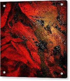 The Underlying Net Acrylic Print by Gun Legler