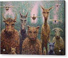 The Untamed Acrylic Print by James W Johnson