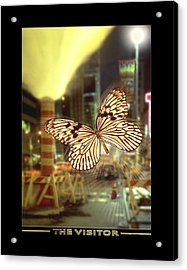 The Visitor Acrylic Print by Mike McGlothlen
