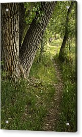 The Way Home Acrylic Print by Michael Van Beber