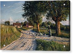 The Way Home Acrylic Print by Peder Monsted