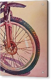 The Wheel In Color Acrylic Print by Jenny Armitage