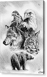 The Wildlife Collection 1 Acrylic Print by Andrew Read