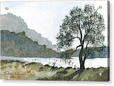 The Wishing Tree Acrylic Print by Janice Sobien