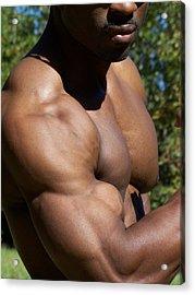 The Wonder Of Biceps Acrylic Print by Jake Hartz