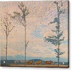 The Wooden Plough Acrylic Print by Edward Louis Lawrenson