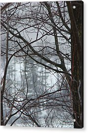 The Yugoslavian Forest 1 Acrylic Print by The Black Rose