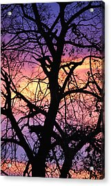 #thepiecesiam Acrylic Print by Becky Furgason