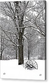There Is A Kind Of Hush Acrylic Print by Diane E Berry