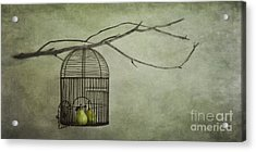 There Is A World Outside Acrylic Print by Priska Wettstein