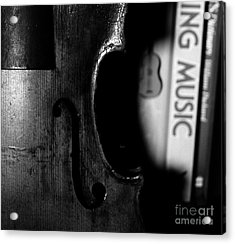 Things That Compose  Acrylic Print by Steven  Digman