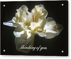 Thinking Of You. Acrylic Print by Harold E McCray