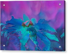 This Is Not Just Another Flower - Bpb02 Acrylic Print by Variance Collections