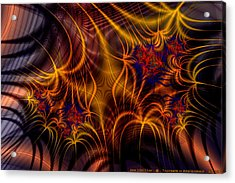Thornweb In Amberorange  Acrylic Print by Ann Stretton