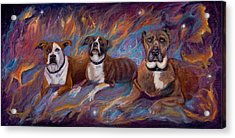 If Dogs Go To Heaven Acrylic Print by Sherry Strong
