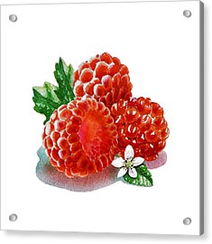 Three Happy Raspberries Acrylic Print by Irina Sztukowski