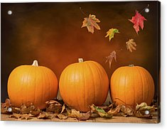 Three Pumpkins Acrylic Print by Amanda And Christopher Elwell